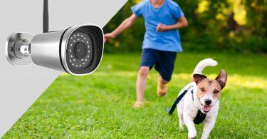 meilleure-camera-de-surveillance-pour-chien